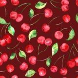 Akwareli wiśni owocowy bezszwowy wzór na Burgundy tle Zdjęcie Royalty Free