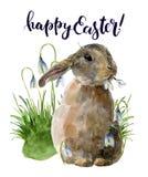 Akwareli Wielkanocna karta z królikiem i śnieżyczkami Ręka malował druk z tradycyjnymi symbolami odizolowywającymi na bielu royalty ilustracja