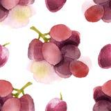 Akwareli winogrona bezszwowi Zdjęcie Stock