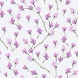 Akwareli wiosny Bezszwowy wzór, Kwitnie gałąź wiśnia ilustracja wektor