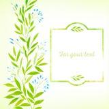 Akwareli wiosny liście Zdjęcie Royalty Free