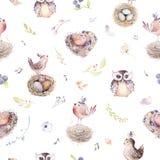 Akwareli wiosny wieśniaka wzór z gniazdeczkiem, ptakami, gałąź, drzewo gałązkami i piórkiem, Watercolour bezszwowa ręka rysujący  royalty ilustracja