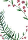 Akwareli zieleni gałąź karta na białym tle ilustracja wektor