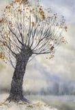 Akwareli zimy krajobraz Stare powalać drzewnego whith nowe gałąź royalty ilustracja