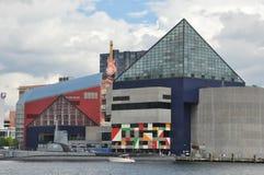akwarium Baltimore obywatel Zdjęcia Stock