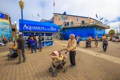 Akwarium molo 39 Obrazy Royalty Free