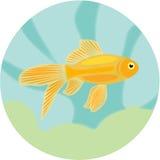 Akwarium ryba: wysoce szczegółowa ilustracja Obrazy Royalty Free