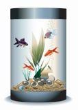 Akwarium z ryba ilustracja wektor