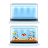 Akwarium z ryba i puste miejsce na białym wektorze ilustracji