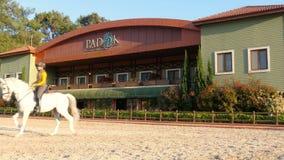 AKYAKA - TURKEY, MAY 2015: dressage, horse show rider girl, sunset stock footage