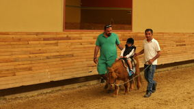 AKYAKA - TURKIJE, MEI 2015: weinig jong geitje het leren paardrijden stock videobeelden