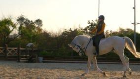 AKYAKA - TURQUÍA, MAYO DE 2015: doma, muchacha del jinete de la demostración del caballo, puesta del sol