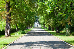 Aléia ao palácio de Ghica Imagens de Stock Royalty Free