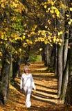 Aléia do outono Fotos de Stock Royalty Free
