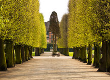 Aléia do parque Foto de Stock Royalty Free