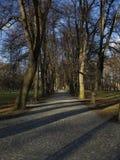 Aléia vazia bonita do parque Fotos de Stock Royalty Free
