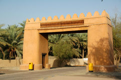 Al Ain Oasis. In the middle of the UAE Desert (part of the Arabian Desert) growing date palms in walled off allotments Stock Photography