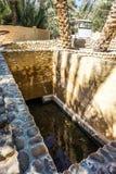 Al Ain Oasis Pool royalty-vrije stock fotografie