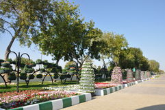 Al Ain paradisträdgårdar Arkivfoton