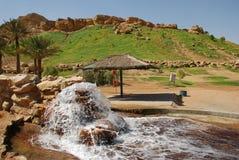 Al Ain Stad stock afbeeldingen