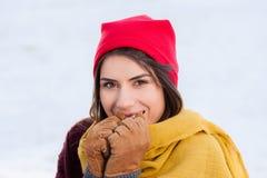 Al aire libre, en invierno nevoso frío Imagenes de archivo
