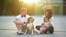 Al aire libre retrato de la familia joven con la pequeña hija y su perro del beagle en la ciudad durante puesta del sol del veran metrajes