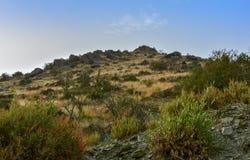 Al Baha Landscape Arkivfoton