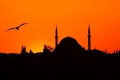 Al camii selim苏丹tramonto yavuz 免版税库存照片