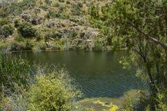 Al Dahyan Valley Dam Royaltyfri Bild