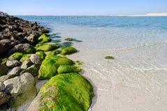 Al Dar Islands. Is Bahrain's island retreat for relaxation located off coast Bahrain in the Arabian Sea Royalty Free Stock Photo
