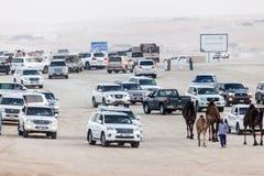 Al Dhafra骆驼节日在阿布扎比 免版税库存图片