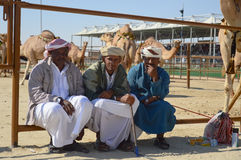 Al Dhafra Camel Festival in Abu Dhabi. ABU DHABI, UNITED ARAB EMIRATES - DEC 27, 2015: Emirate people with camels in the aviary  at Al Dhafra Camel Festival in Stock Images