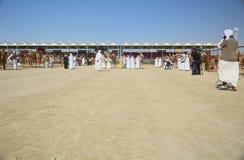 Al Dhafra Camel Festival in Abu Dhabi. ABU DHABI, UNITED ARAB EMIRATES - DEC 27, 2015: Festival place with emirati people at Al Dhafra Camel Festival in Al Stock Photo