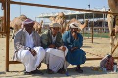 Al Dhafra Camel Festival en Abu Dhabi imagenes de archivo