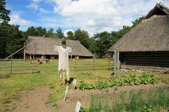 al Estonii farmy mare Tallinie rocca Obrazy Royalty Free