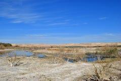 Al Farafra-oase, Egypte stock fotografie