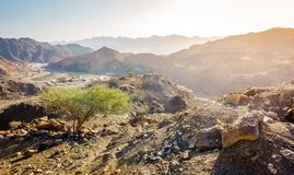 Al Hajar Mountains of Fujairah stock images