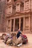 Al Khazneh temple in Petra city royalty free stock photo