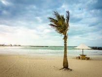 Al Mamzar beach Royalty Free Stock Image