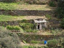Al Mare Italy de Monterosso del jardín de la terraza Fotos de archivo libres de regalías