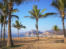 Al Mughsayl. Beach in Al Mughsayl, near Salalah, Oman Stock Images