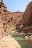 AL Mujib вадей в мертвом море Стоковое Изображение
