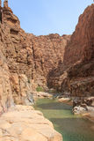 Al Mujib Wadi στη νεκρή θάλασσα Στοκ Εικόνα