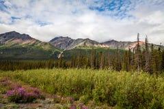 Al norte del título de Haines Junction hacia el territorio del Yukón del lago Kluane Canadá Imágenes de archivo libres de regalías