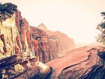 Al parco nazionale di Zion, U.S.A. Immagine Stock Libera da Diritti