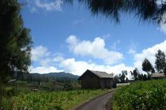 Al piede del paesino di montagna Ranupani fotografia stock