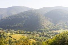 Al piede delle montagne serbe Fotografia Stock