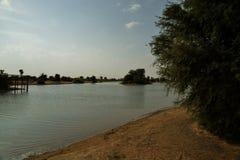 Al Qudra jeziora, Dubaj Obrazy Royalty Free