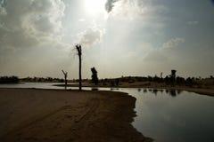 Al Qudra Lakes Dubai Royaltyfri Fotografi
