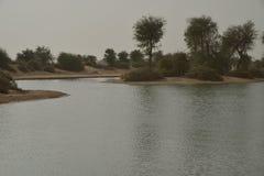 Al Qudra Lakes Dubai Royaltyfri Foto